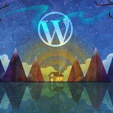 Paket Web Design CMS / Wordpress