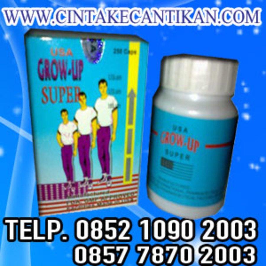 GROW UP PENINGGI BADAN 081291625333 peninggi badan untuk segala umur